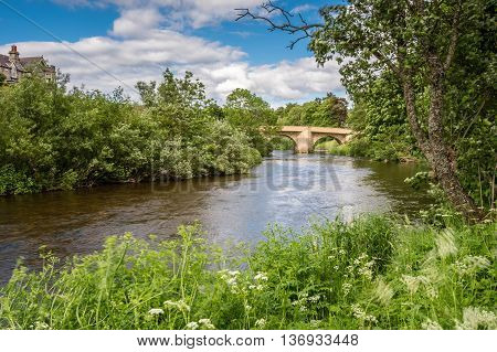 The River Coquet at Rothbury, with lush summer vegetation along the riverbank, in Northumberland