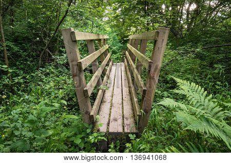 Footbridge in Woodland, close to Weldon Bridge in Northumberland, leading to a riverside, woodland walk