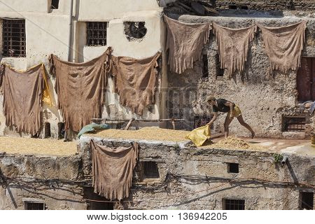Fez, Morocco - June 10. 2016: Workers At The Chouwara Tannery In Fez, Morocco.
