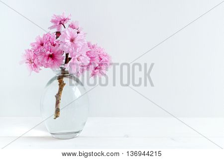 Pink Blossom styled stock photography with white copy space for your own business message promotion headline great for blogging and social media