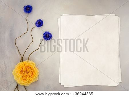 Styled mock up flatlay stock photography using a hand painted background copy space for your business social media or blog message or design perfect for lifestyle bloggers. Also great for singing as an invitation to a wedding, party or other celebration.