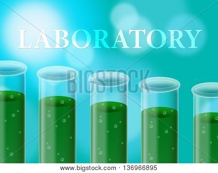 Laboratory Experiment Represents Analysis Examine And Assessment