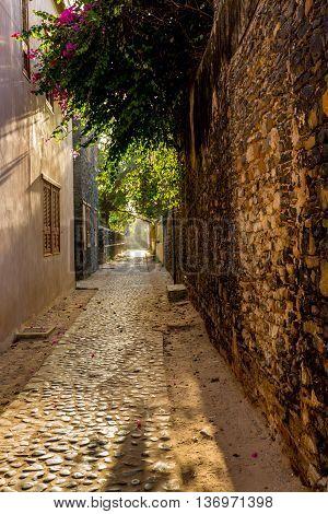 Alleys Of Goree Island
