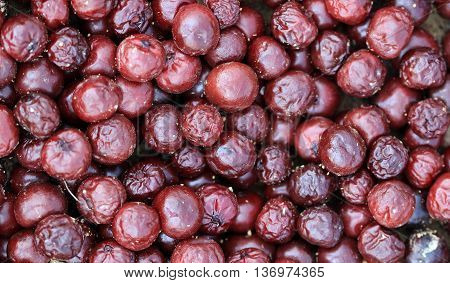 picture of a Rotten sour cherry backgorundorganic pollution