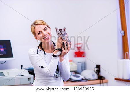 Veterinarian with stethoscope holding little sick cat. Young blond woman in white uniform working at Veterinary clinic.