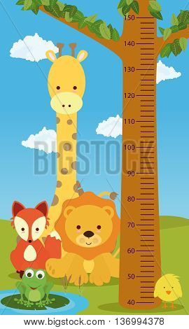 Height chart animals for kids room or doctor