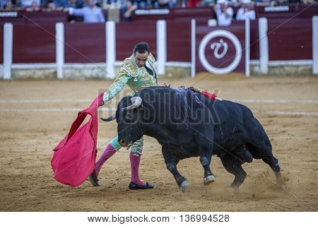 Ubeda Spain - September 29 2010: The Spanish Bullfighter Daniel Luque bullfighting with the crutch in the Bullring of Ubeda Spain