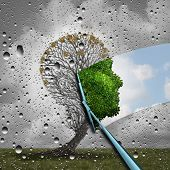 Reverse aging process and make young again medical concept or plastic surgery symbol as a wiper wiping away old decaying tree and revealing to a healthy green human head plant with leaves as a medical metaphor for renewal with 3D illustration elements. poster