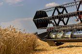 Combine harvester close up. Combine harvester harvesting wheat. Grain harvesting combine. Combine harvesting wheat. Wheat field blue sky. Close-up view of combine. poster