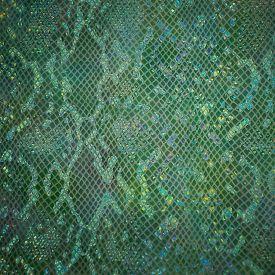 Green snake skin . Natural snake leather.