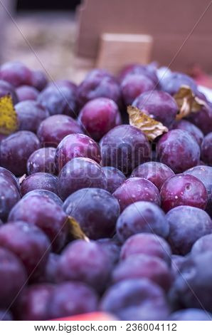 Plums. Blue And Purple Plums On The Local Market