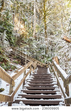 Stairway To The Summit Of The Snowy Mountain Forest. Evergreen Treetops Covered With Snow, Wooden St