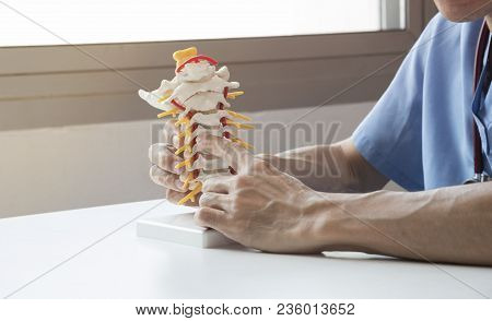 Doctor Explaining About Spine To The Patient