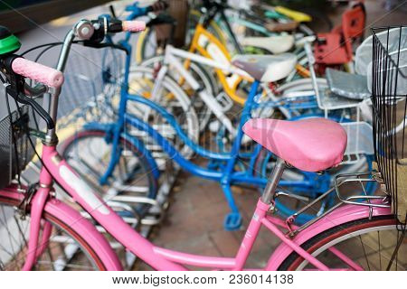 Pink Bicycle. Bicycle Rental In The City.