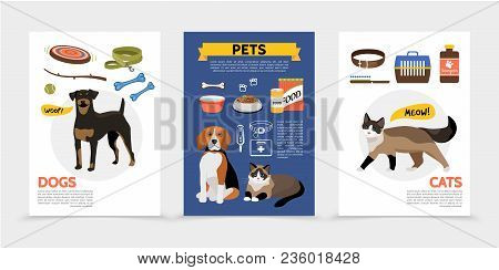 Flat Colorful Pet Shop Brochures With Cat Carrier Dog Toys Animal Food Balls Bones Branch Bowls Comb