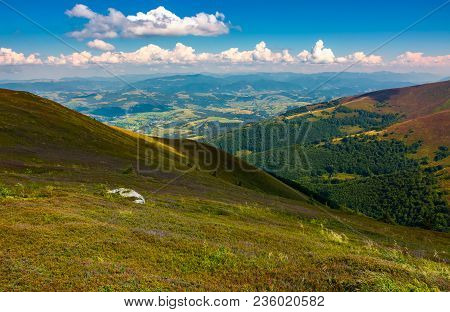 Colorful Grass On Mountain Hillside. Lovely Landscape In Late Summer
