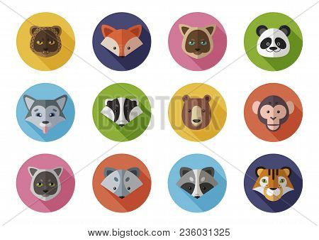 Vector Icons Set Of Wild And Homes Animals. Leopard, Fox, Panda, Badger, Bear, Arctic Fox, Monkey, R