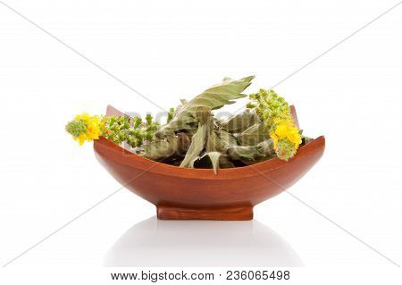 Common Agrimony Fresh Flower And Dried Leaf In Wooden Bowl Isolated On White Background. Medicinal P