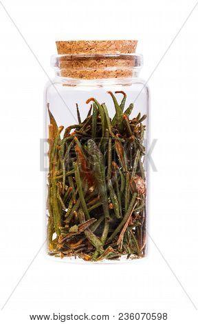 Marsh Northern Labrador Tea Ledum Palustre In A Bottle With Cork Stopper For Medical Use.