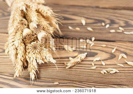 One Bundle Of Wheat And Poppy And Lot Of Scattered Grain On Old Rustic Wooden Planks