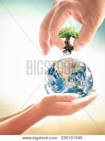 World Environment Day Concept: Two Human Hands Holding Big Tree And Earth Globe Over Green Nature Ba