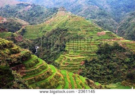 The Banaue Rice Terraces Phillippines