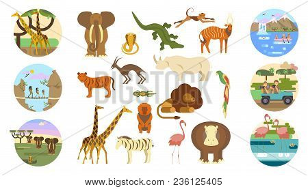 African Safari Banners Set And Animals. Ecotourism Travel. Flat Isolated Eps 10 Vector Illustration