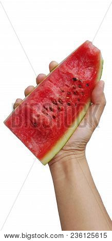 Man Holding Watermelon. Portrait Man Is Holding Slice Of Watermelon.
