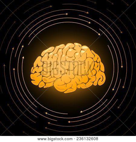 Golden Brain, Smart Mind Graphic Illustration, Vector