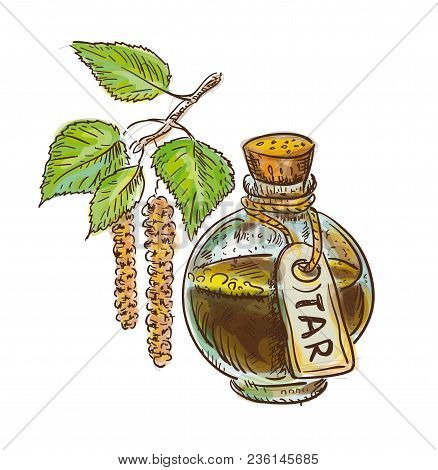 Birch Coal Tar In Bottle With Twig. Watercolor Imitation With Sketch. Vector Illustration.