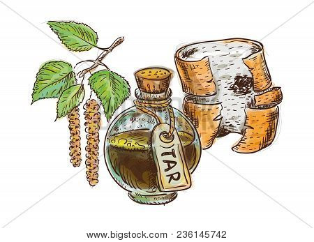 Birch Coal Tar In Bottle With Birchbark And Twig. Watercolor Imitation With Sketch.