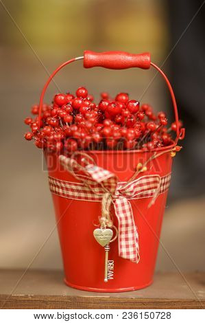 Berry Season. Red Bucket With Berries . Harvest Of Berries.organic Bio Berries