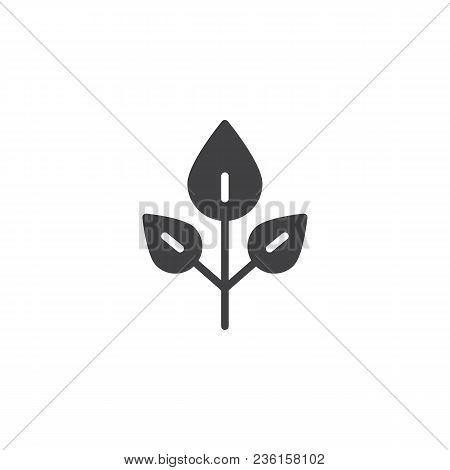 Beech Tree Leaves Vector Icon. Filled Flat Sign For Mobile Concept And Web Design. Leaf Simple Solid