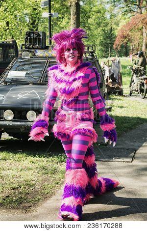April, 19, 2014, Haarzuilens, Woman Dresses Up As A Colorful Fantasy Cat On The Elf Fantasy Fair (el