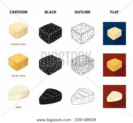 Brynza, Smoked, Colby Jack, Pepper Jack.different Types Of Cheese Set Collection Icons In Cartoon, B
