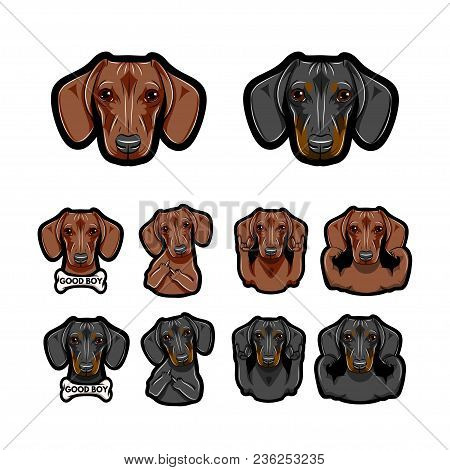 Dachshund Dos. Bone, Rock Gesture, Muscles, Middle Finder. Dog Face, Head. Dog Breed Set. Vector Dac