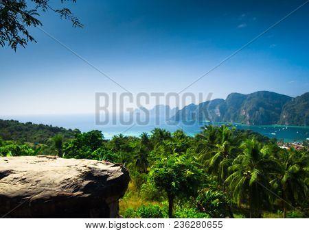 Scenic  Holidays Palm Island