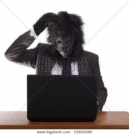 Confused gorilla in the office.