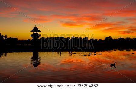 Still Waters At Henley Lake Park, Masterton, New Zealand At Dawn.