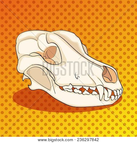 Pop Art Skull Dog Sideways. Color Background. Comic Book Style Imitation. Raster Illustration
