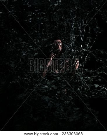 3d Illustration Portrait Of Scary Ghost Woman In Woods Vine,horror Image,ghost Image Concept And Ide