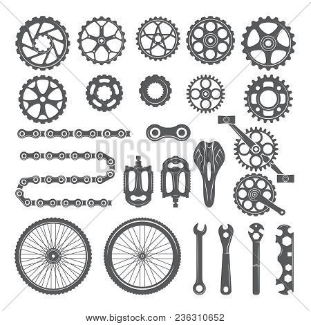 Gears, Chains, Wheels And Other Different Parts Of Bicycle. Bike Pedal And Elements For Cycle Biking