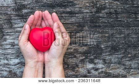 Heart Health Care Medical Cardiovascular Disease Concept And Organ Donor Donation For Life Giving Ch