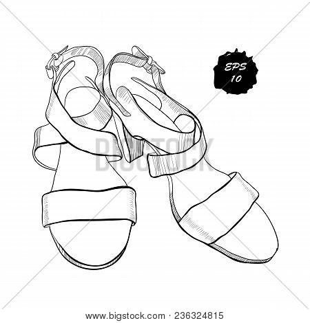 Vector Illustration Of Isolated Objects Sandal Shoes. Drawing Graphic Design For Woman, Girl And Lad