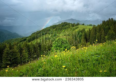 Landscape Of A Mountain Hill At Daytime. Mountain Landscape In Summer With Cumulus Clouds. Rainbow A