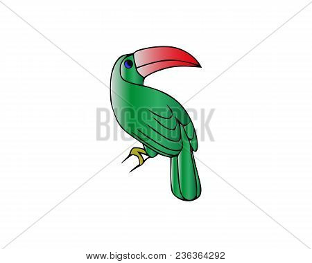Ara Parrot Cartoon Character. Cute Ara Parrot Flat Vector Isolated On White. South America Fauna. Co