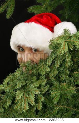 Christmas Girl Peeking