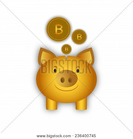 Piggy Bank For Coins, Picking Up Bitcoin, Investment In Bitcoin, Capital Bank, Bank Account, Deposit