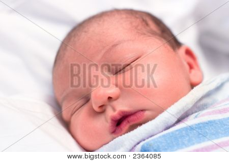 Newborn Baby Sleeping In Hospital
