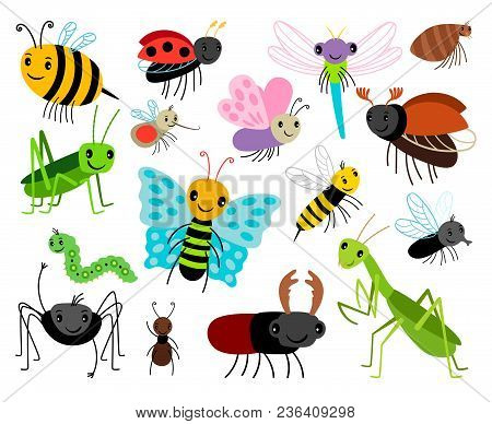Cartoon Insects. Vector Cute Insect Collection, Fly And Ladybug, Mantis And Wasp, Bug And Beetle Iso